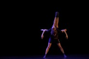 5. Tanz BiennalePräsentation von Masterarbeiten16.02.2016Stuio 1 im ZZT_Mariella_Greil